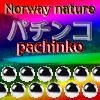 Norway nature pachinko